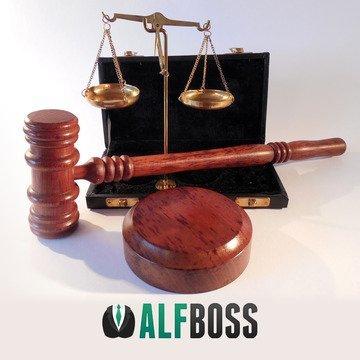 alf liability insurance